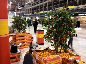 spanish citrus, tesco